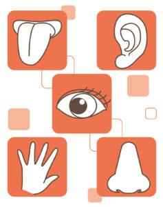 五感を刺激し脳に記憶するコピーライティングのテクニックを使う!!